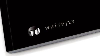 whitefly-Destacada